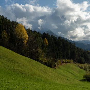 Meravigliosi boschi e prati ai piedi dell'Alpe di Siusi
