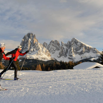 Cross-country skiing in the background with the Lang- and Plattkofel on the Seiser Alm